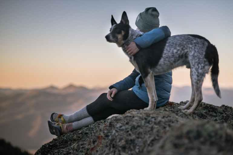 Blog – Fur Star Pet Care