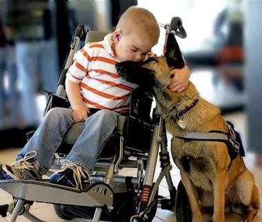 In home pet care columbus ohio professional dog walkers columbus ohio